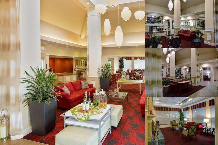 Hilton garden inn south southpark colonial heights va - Hilton garden inn charlotte southpark ...