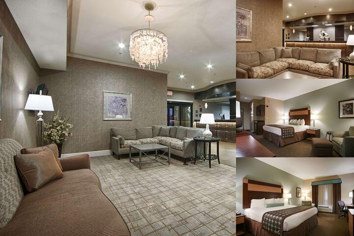 Best Western Plus Texarkana Inn & Suites photo collage