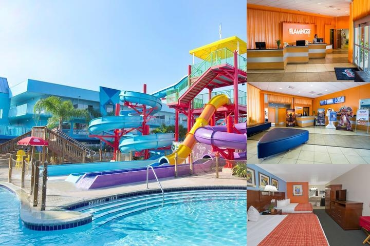Flamingo Waterpark Resort photo collage
