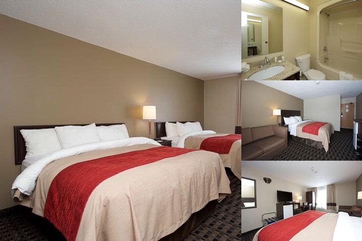 Comfort Inn Midland photo collage