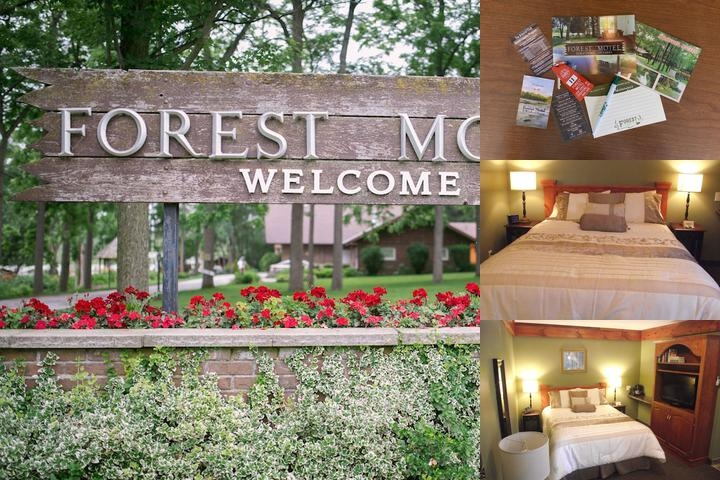 Forest Motel & Woodland Retreat photo collage