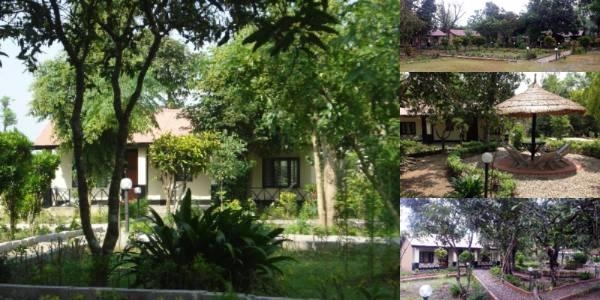 Chitwan Forest Resort photo collage