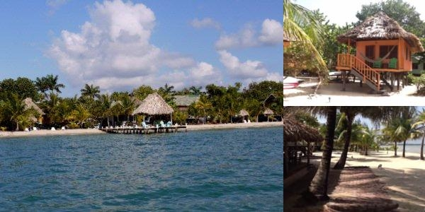Green Parrot Beach Houses & Resort photo collage