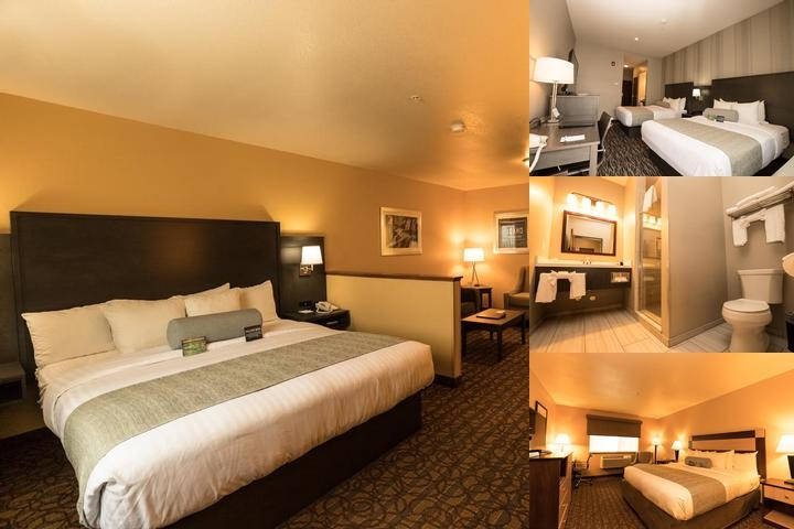 Best Western Plus Sawtooth Inn & Suites Regular Room With 2 Queen Beds