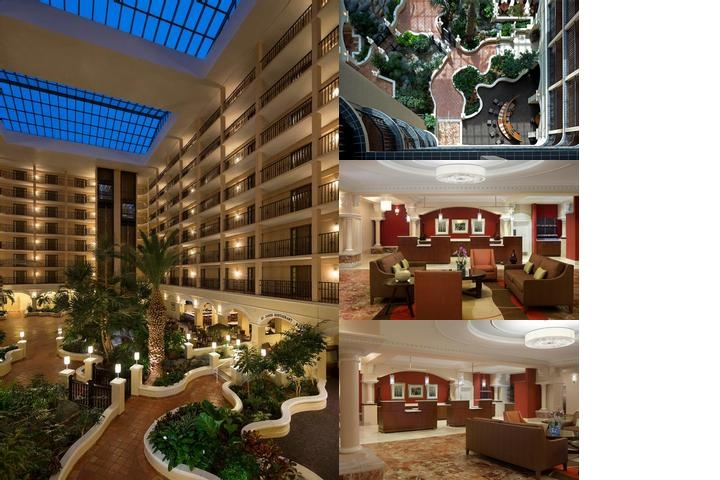 Sheraton Suites Tampa Airport photo collage