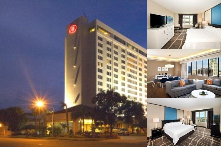 Hilton St. Petersburg Bayfront photo collage