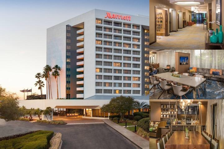 Tampa Marriott Westshore photo collage