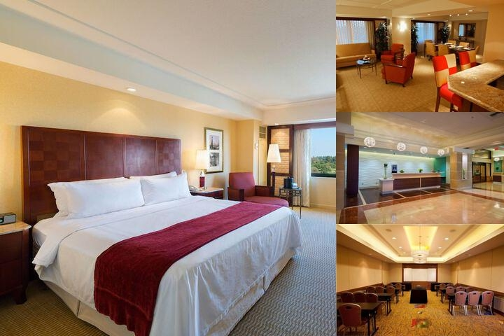Long Beach Marriott photo collage