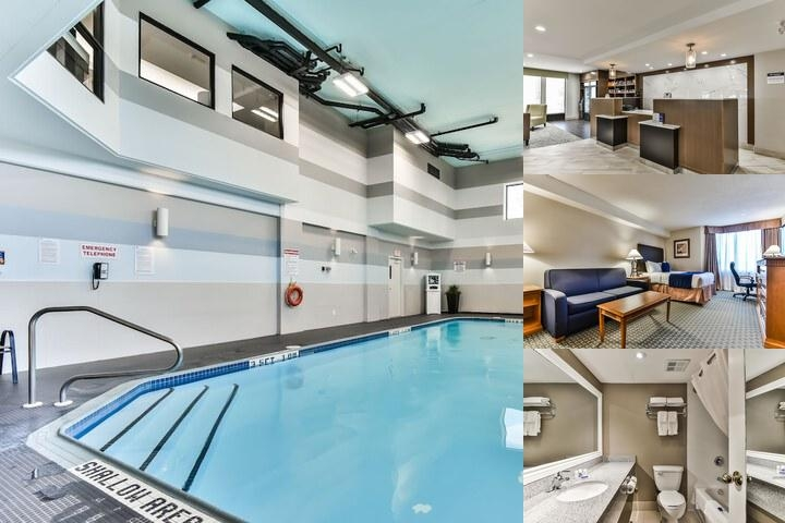 Best Western Plus Cambridge Hotel photo collage