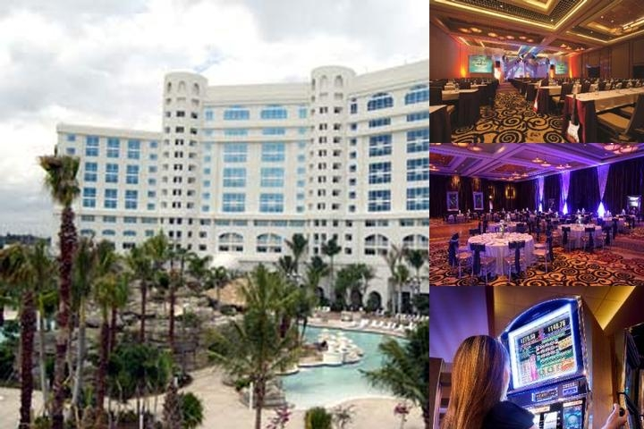 Seminole Hard Rock Hotel & Casino Hollywood Fl photo collage
