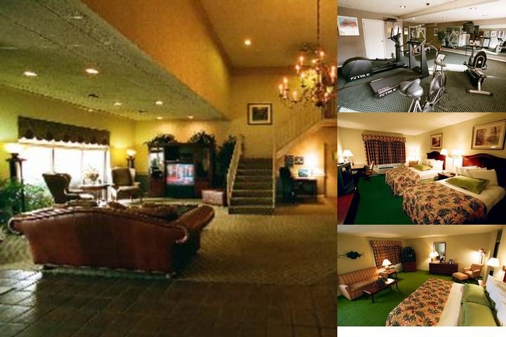 Best Western South photo collage