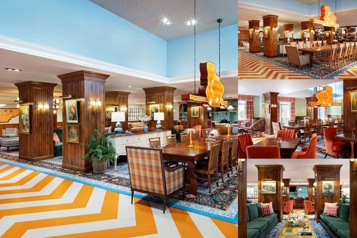 Hilton Garden Inn Knoxville / University photo collage