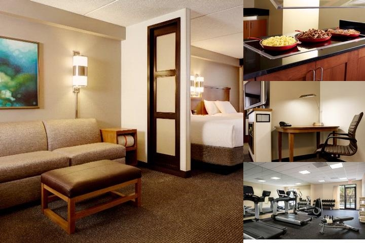 Hyatt Place Tampa Busch Gardens photo collage