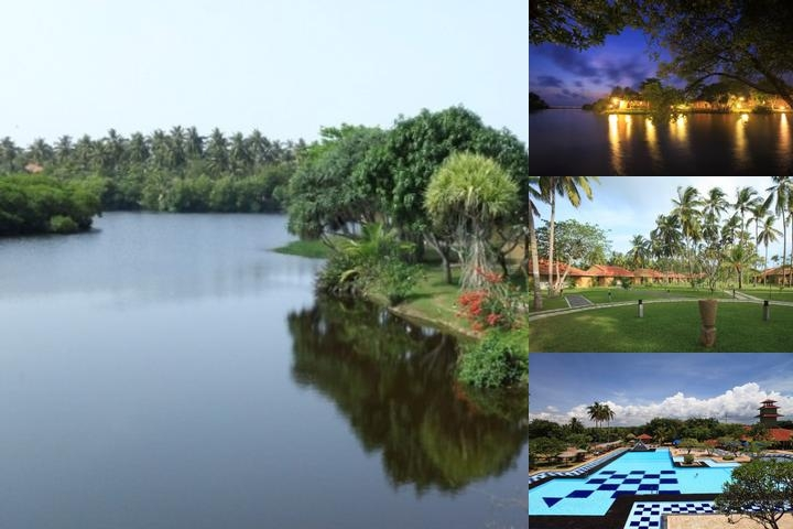 Club Palm Bay photo collage