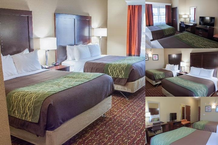 Comfort Inn & Suites Artesia photo collage