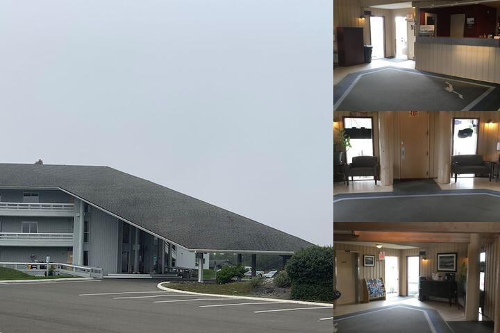 the grey gull ocean shores wa 651 ocean shores 98569. Black Bedroom Furniture Sets. Home Design Ideas