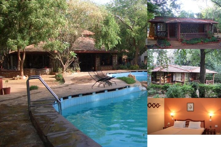 Tiger Moon Resort. Ranthambhore photo collage