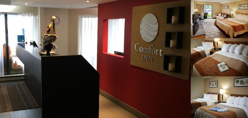 Comfort Inn Airport East Ancienne Lorette photo collage