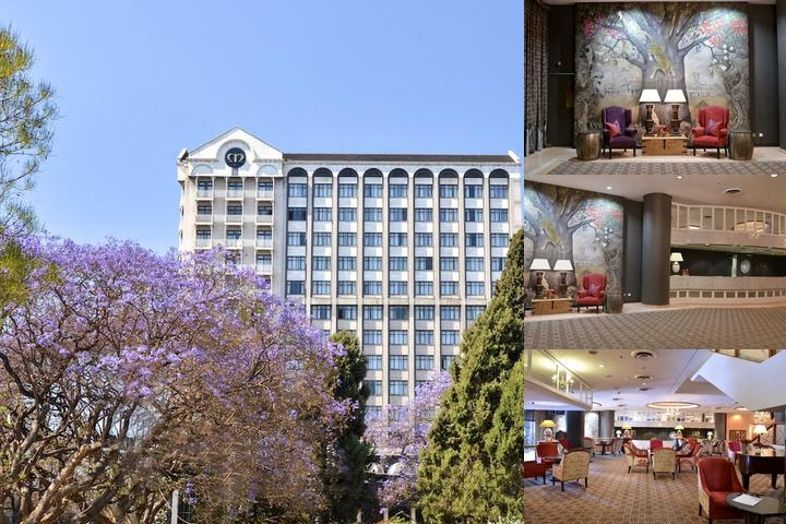 Meikles Hotel photo collage