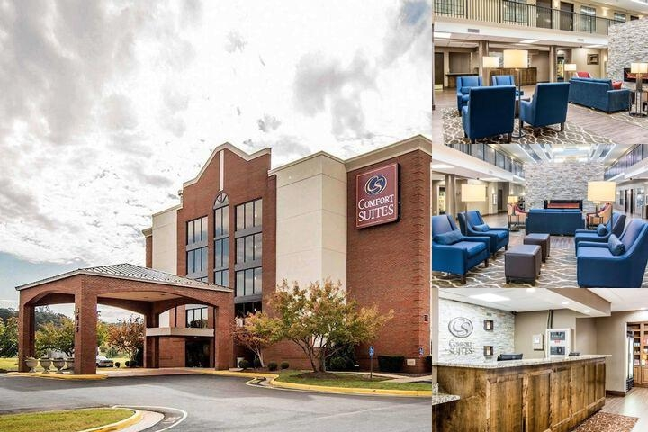 Comfort Suites Fredericksburg photo collage