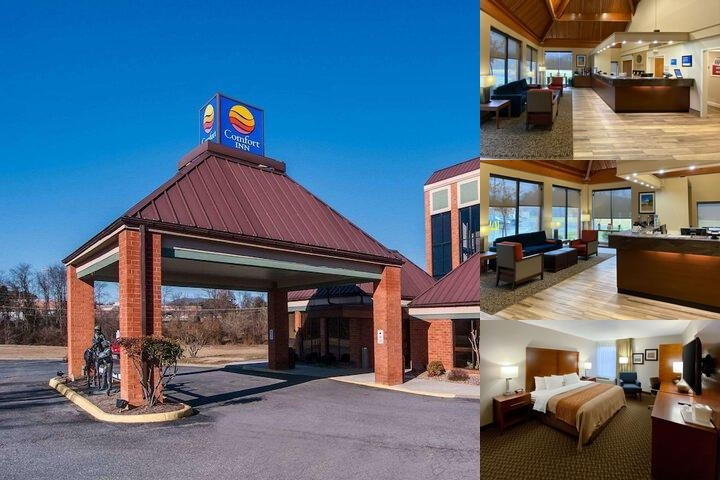 Comfort Inn Lex. Va photo collage