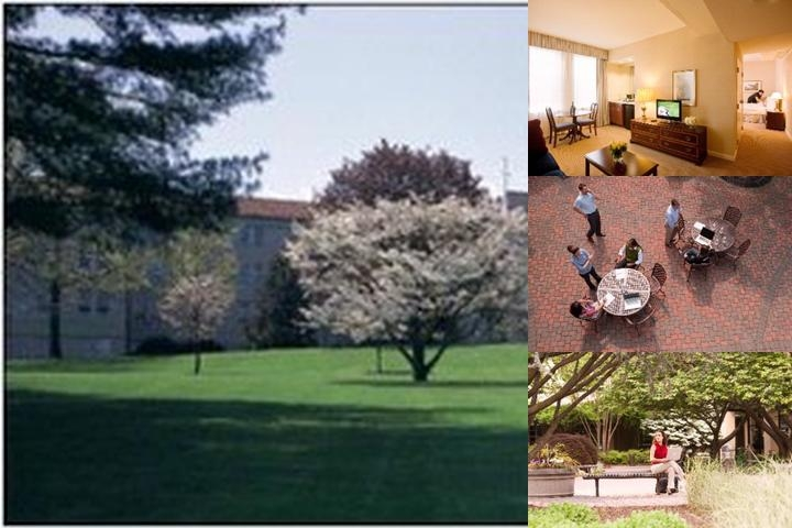 The Bolger Center photo collage