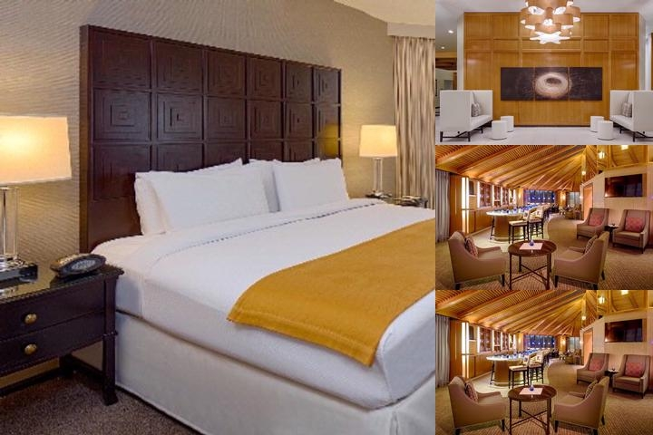 Doubletree by Hilton Houston Greenway Plaza photo collage