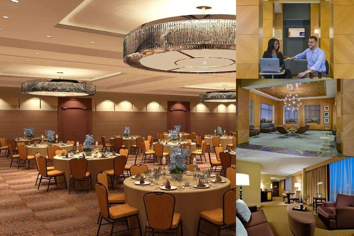 Doubletree by Hilton Chicago Arlington Heights photo collage