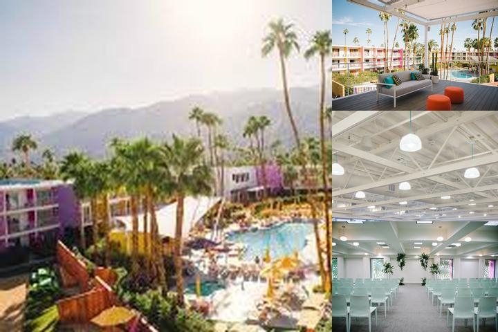 The Saguaro Palm Springs a Joie De Vivre Hotel photo collage