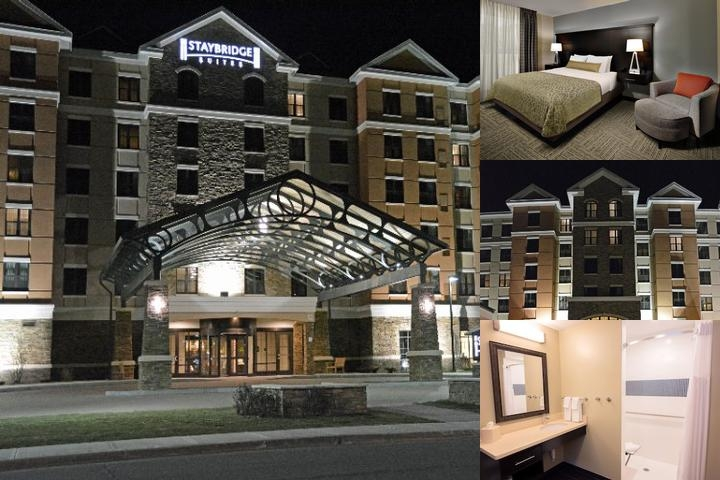 Staybridge Suites Albany Wolf Road Colonie Center photo collage