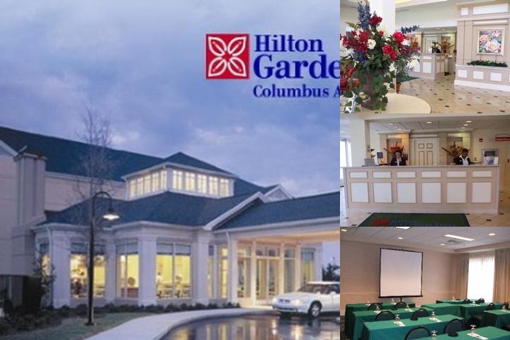 Hilton Garden Inn Columbus Airport photo collage
