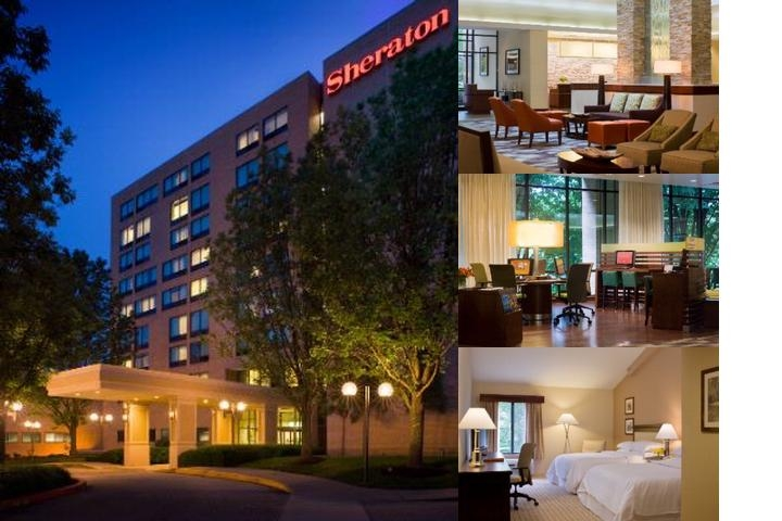 Sheraton Columbia Town Center Hotel photo collage