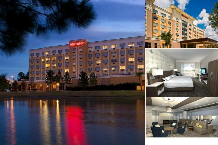 Sheraton Jacksonville photo collage