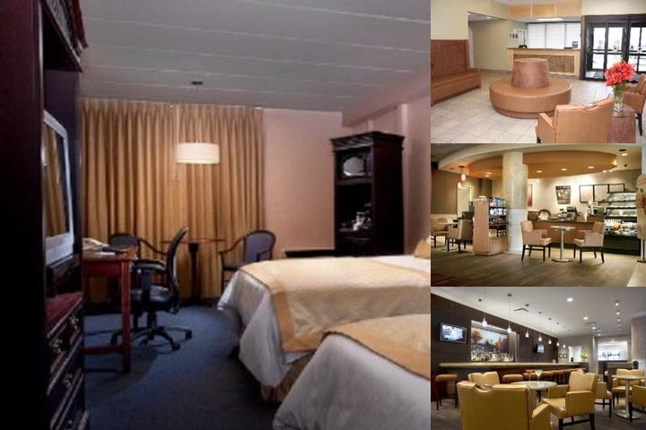 Best Western Parkway Hotel Toronto North Newly Renovated Guestrooms With White Duvets