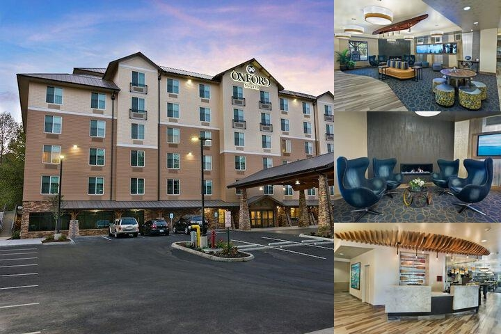 Oxford Suites Bellingham Wa photo collage