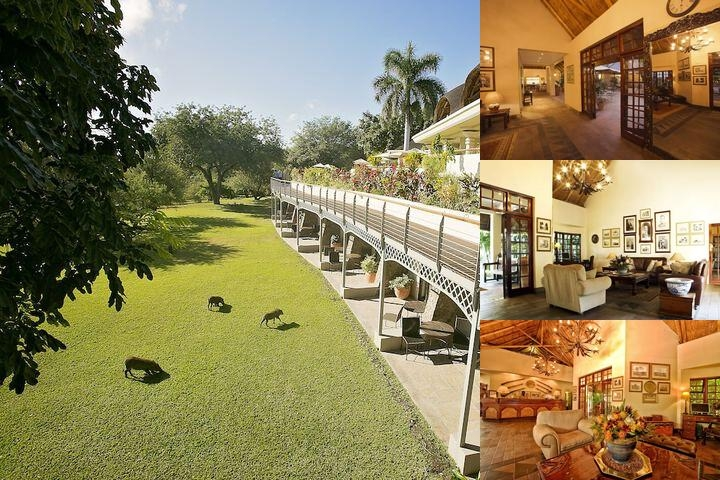 Ilala Lodge Hotel photo collage
