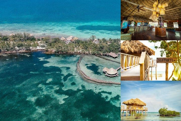 Thatch Caye photo collage