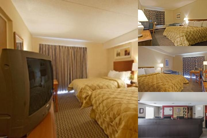 Comfort Inn Corner Brook photo collage