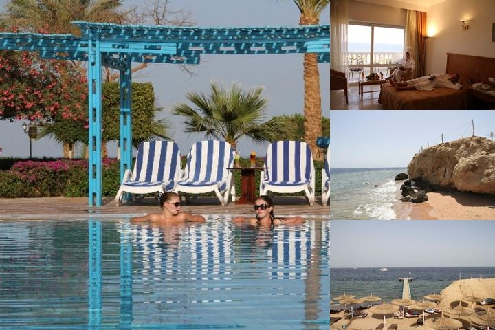 Royal Paradise Beach Resort Sharm El Sheikh photo collage
