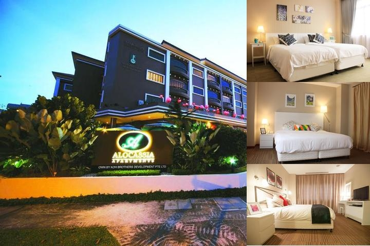Alocassia Apartments photo collage
