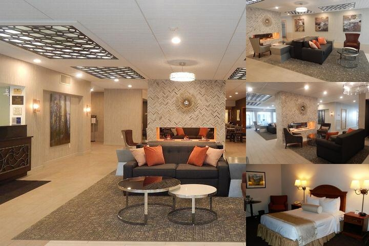 Best Western Plus Bradford Inn photo collage