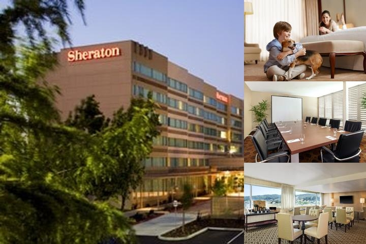 Sheraton Pleasanton photo collage