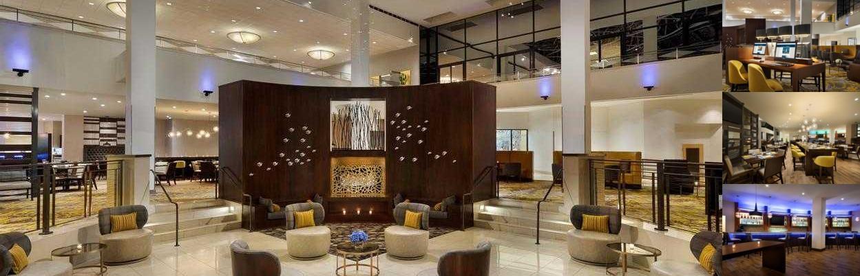 hilton hotel senior rate
