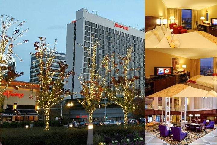 Stamford Marriott Hotel & Spa photo collage