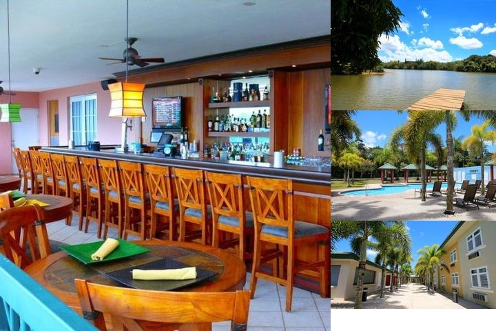 Cidra Country Club at Treasure Island photo collage