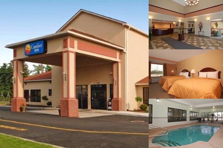 Comfort Inn Near The Walden Galleria Mall photo collage