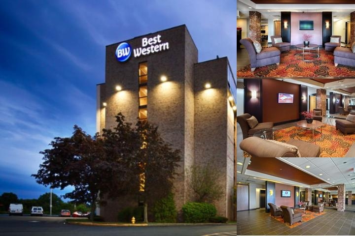 Best Western Executive Hotel New Haven West Haven photo collage
