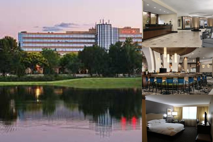 Hilton Orlando / Altamonte Springs photo collage