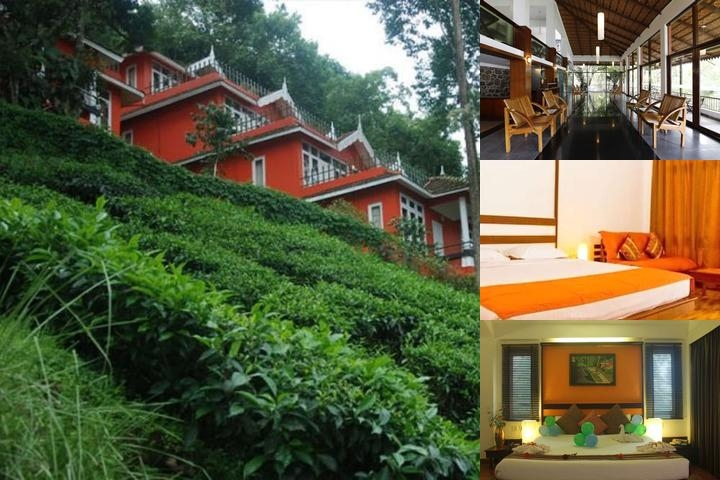 Tea Valley Resort photo collage