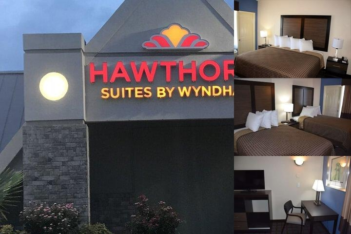Hawthorn Suites by Wyndham Columbia photo collage